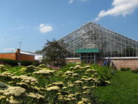 View of the Matthaei Botanical Gardens conservatory from the perennial garden. Photo courtesy Matthaei Botanical Gardens & Nichols Arboretum.