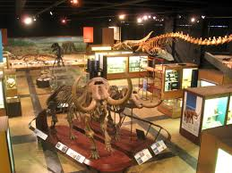Current dinosaur exhibition space in the U-M Museum of Natural History, slated to close for relocation on Dec. 30, 2017.