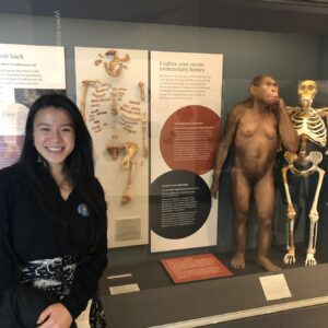 The U-M Museum of Natural History reopened to the public on Sunday, April 14, 2019. Originally housed in the A.G. Ruthven Museums building from 1928 until January 2018, the museum now occupies the brand new Biological Sciences Building at 1105 N. University Avenue.