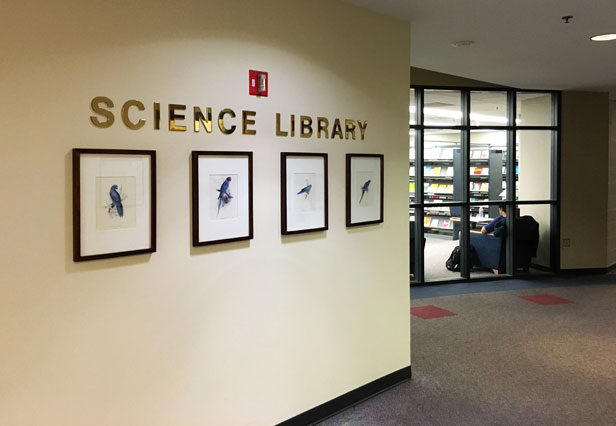 The words science library on a wall